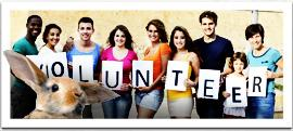 inset-home-volunteer